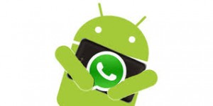whatsapp new beta android