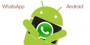 WhatsApp for Android stable version
