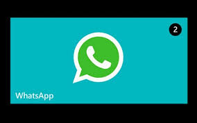 whatsapp for windows phone bug wa web
