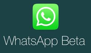 whatsapp for android beta 2 16 258