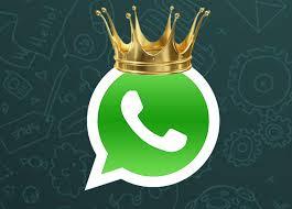 whatsapp vs livetext