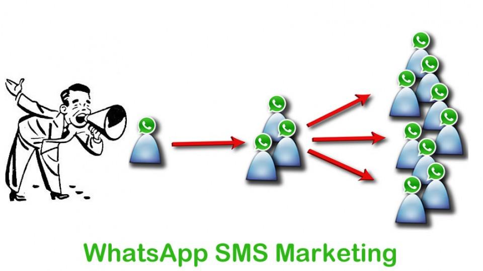 http://bulkwhatsappsender.com/wp-content/uploads/2014/08/whatsApp-sms-marketing-960x540.jpg