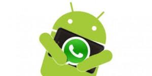 whatsapp new beta android