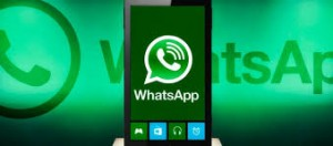 whatsapp for windows phone update 2 12 276