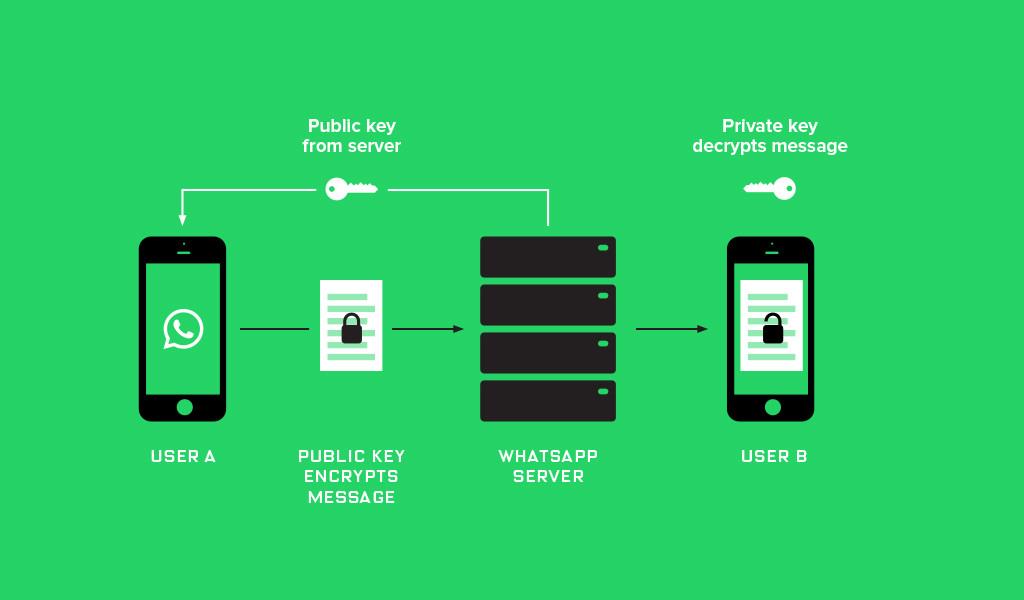 Whatsapp_Encryption_Proxima.jpg