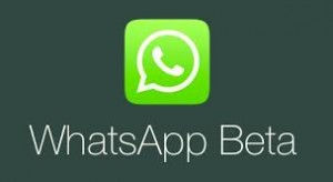 whatsapp new beta for android