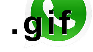 GIFs android beta 2 17 6